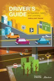 Driver's guide to operation safety and licensing - MoJo's License ...