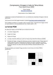 Compression d'images à l'aide de Tetra-Arbres ... - Pierre Colomb