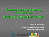 Benefícios sócio-econômicos e ambientais dos SISTEMAS ... - SIGAM