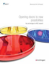 Opening doors to new possibilities
