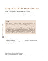 Folding and Finding RNA Secondary Structure