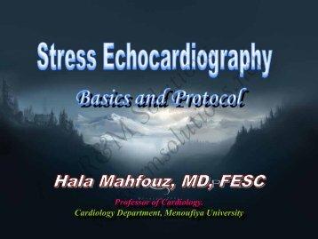 EAE Guidelines 2008 - cardioegypt2011