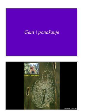02 Bihevioralna genetika.pdf
