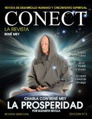 REVISTA CONECT