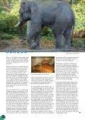 150 jaar Diergaarde Blijdorp - Vrienden van Blijdorp - Page 6