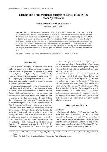 Cloning and Transcriptional Analysis of Exocellulase I Gene