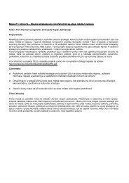 Modul č.1, téma č.4 – Obecné strategie pro vytvoření ... - EUROlocal