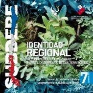 Identidad Regional, reconociendo la diversidad ... - Territorio Chile