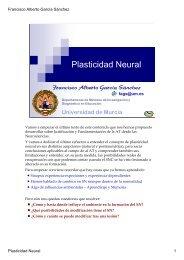 7-Plasticidad Neural - Proyecto Webs - Universidad de Murcia
