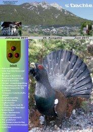 Datei herunterladen (530 KB) - .PDF - Karrösten - Land Tirol