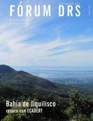 Revista_Forum_DRS_Edicao05 - Instituto Interamericano de ...