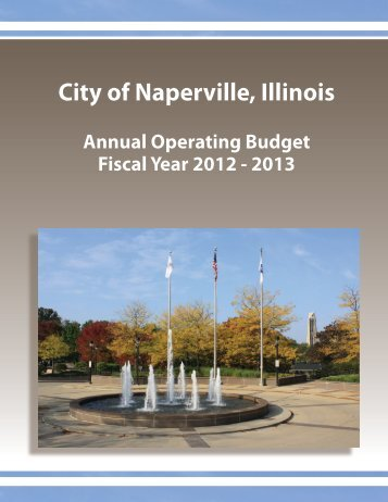 General Information (continued) - City of Naperville