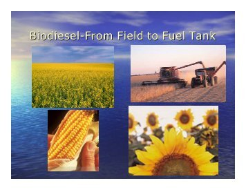 Biodiesel-From Field to Fuel Tank - Clean Energy Resource Teams