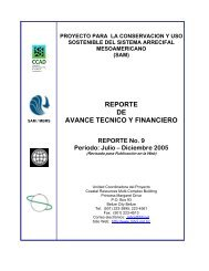 reporte de avance tecnico y financiero - Mesoamerican Barrier Reef ...