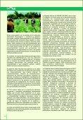 """""""LA TASA DE DESCUENTO Y LOS PROYECTOS SOCIALES"""". - Page 4"""