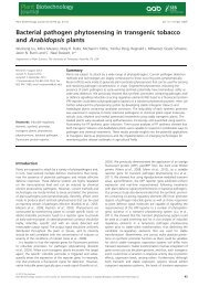 Bacterial pathogen phytosensing in transgenic tobacco and ...