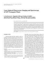 Laser-Induced Fluorescence Imaging and ... - IngentaConnect