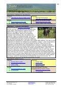 Safari resa till Tanzania med Lake Manyara ... - Dahl Safaris - Page 4