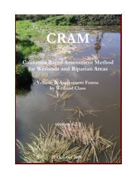 CRAM 4.2...Oct06.pdf