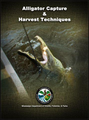 Alligator Capture & Harvest Techniques