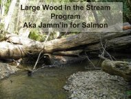 Large Wood In the Stream Program Aka Jamm'in for Salmon