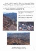 Particularités des opales d'Ethiopie - GemNantes - Page 7