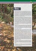 Sakız Eylem Planı - Page 7