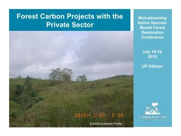 Forest Carbon Projects with the Private Sector - Rainforestation