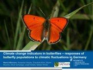 Climate change indicators in butterflies – responses of ... - Vlindernet