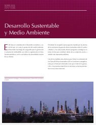 Desarrollo Sustentable y Medio Ambiente - Instituto de ...