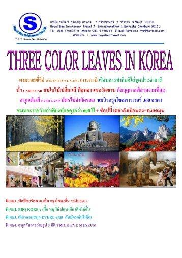 three color leaves in korea (ฤดูใบไม้สามสี) - RoyalSea Travel
