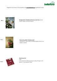 Nr. 1 Nr. 2 Nr. 3 - Bellaflora