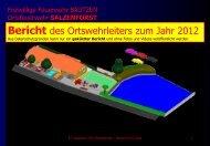 Bericht des Ortswehrleiters zum Jahr 2012 - Feuerwehr Salzenforst