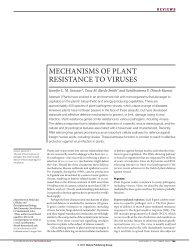 MECHANISMS OF PLANT RESISTANCE TO VIRUSES