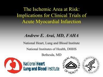 1/14/08 AArai - Acute Infarction - Area at Risk