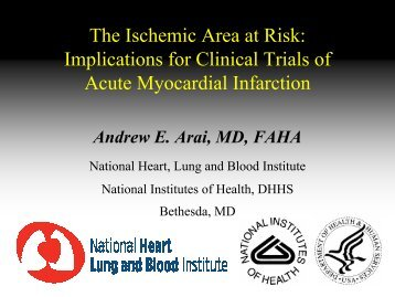 1/14/08 AArai - Acute Infarction - Area at Risk