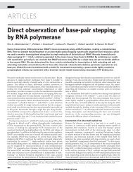 Direct observation of base-pair stepping by RNA polymerase