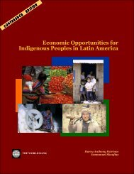 Economic Opportunities for Indigenous Peoples in Latin America