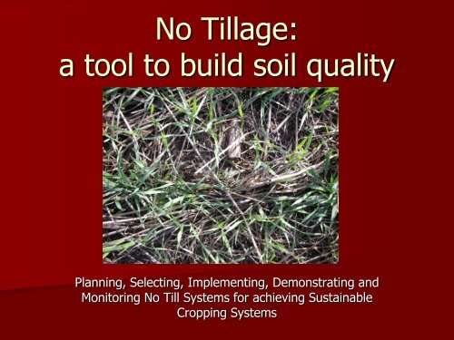 No Tillage: a tool to build soil quality