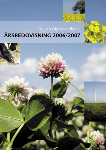 Ã…rsredovisning SFO 2007.indd - Svensk Raps