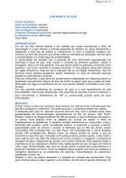 Página 1 de 13 www.es.sebrae.com.br - Sebrae no Espírito Santo