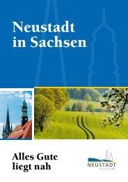 Neustadt in Sachsen