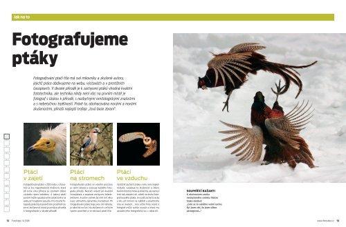 ptáci xx