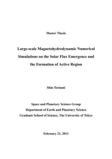 Toriumi, S. 2011, Master thesis