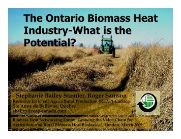 The Ontario Biomass Heat Industry-What is the Potential? (Bailey ...