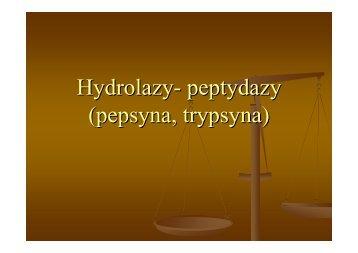 Enzymy trypsyna i pepsyna