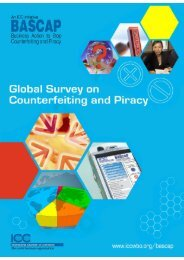 BASCAP Global Survey on Counterfeiting and Piracy - International ...