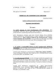 jugement NSV HOLDINGS c/ SPRL BIOMASS - Juridat