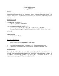Alcohol Dehydrogenase - CMBE