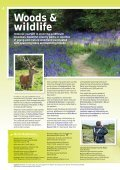Visitor Guide - The National Forest - Page 4